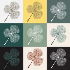 Illustration of ginkgo leaf