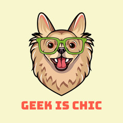 Chihuahua dog geek. Dog in smart glasses. Geek in chic inscription. Vector.