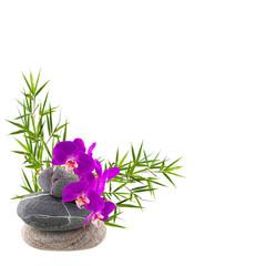 bambou et orchidée sur galets