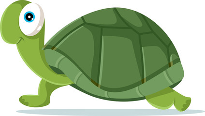 Cute Turtle Vector Cartoon Illustration