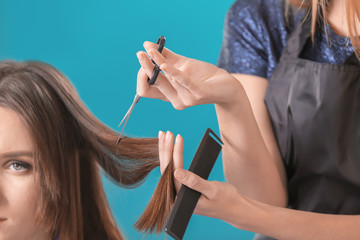 Professional hairdresser working with client on color background