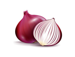 Vector Fresh Whole and Sliced Red Onion Bulbs Close up Isolated on White Background