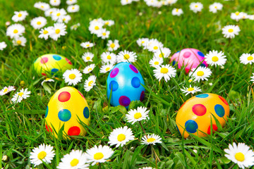 Colorful painted easter eggs in grass with daisies