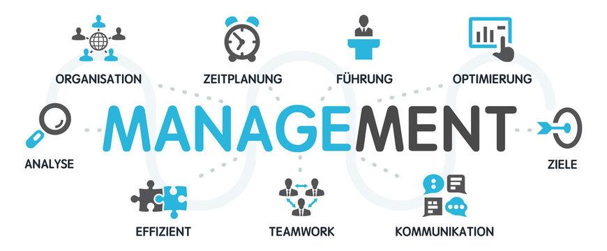 MANAGEMENT Vektor Grafik Icons Priktogramme
