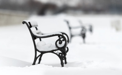 Snow covered iron bench