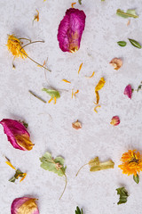 Set of assorted petals isolated on wooden background, top view, close-up, selective focus