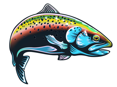Realistic drawing of the rainbow trout jumping out water.Sketch isolated on white background. Concept art for horoscope, tattoo or colouring book.