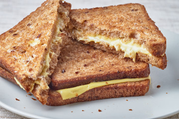 Grilled sandwich with cheese on a plate.