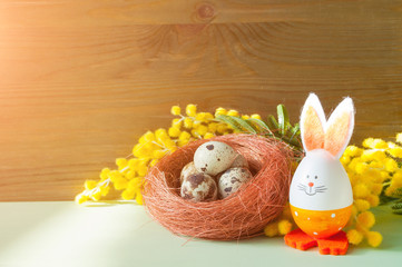 Easter festive background. Easter bunny and eggs in the nest near the mimosa flowers