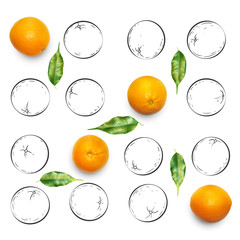 Fruit composition with fresh orange and cartoon cute doodle drawing oranges on white background. Creative minimalistic food concept.