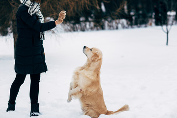 Picture of girl with labrador on walk in winter park