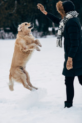 Picture of woman playing with labrador in winter park