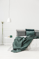 Green and white bedroom interior