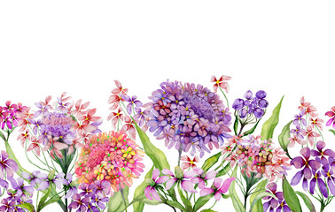 Colorful summer wide banner. Beautiful vivid iberis flowers with green leaves on white background. Horizontal template. Seamless panoramic floral pattern. Watercolor painting.