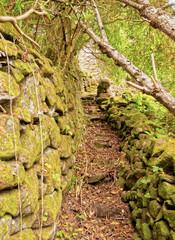 Trail from Espirito Santo to Maia, Santa Maria Island, Azores, Portugal