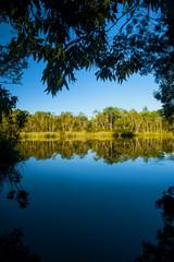 Everglades - Australia