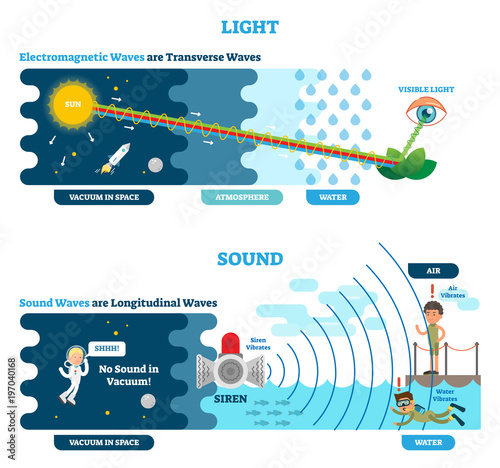 Longitudinal And Transverse Wave Type Vector Illustration