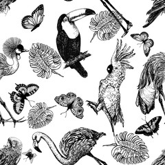 Seamless pattern of hand drawn sketch style exotic birds, plants and butterflies isolated on white background. Vector illustration.