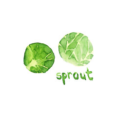 Watercolor hand drawn sketch illustration of sprout with lettering isolated on white