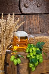 Still Life with Beer Glass and Raw Material for Beer Production