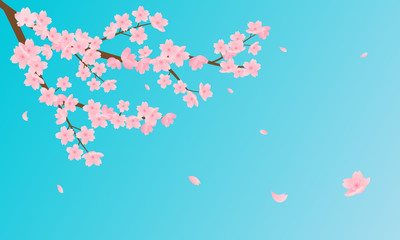 Wall Mural - Cherry Blossom vector illustration. Pink Sakura branch with petals falling against bright blue sky background.