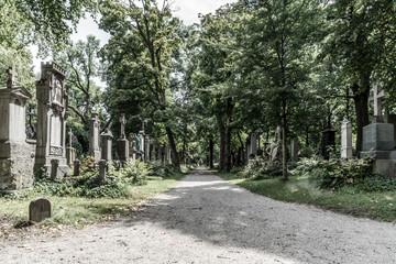Kiesweg führt vorbei an alten Gräbern im ehemaligen Südfriedhof München