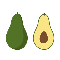 cut green avocado exotic icon vector
