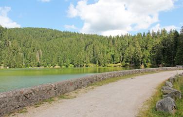 Lac vert Vosges France