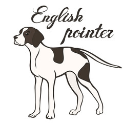 English pointer dog breed vector illustration. Doggy image in minimal style, flat icon. Simple emblem design for pet shop, zoo ads, label design, animal food package element. Gun dog sign. Dog stand.