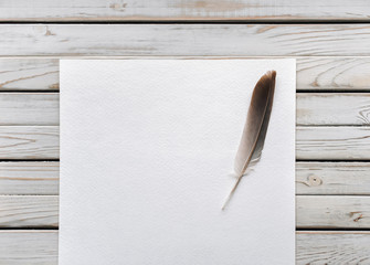 Feather on a blank sheet of paper as a symbol of poetry. Writing and poetry concept. World Poetry Day.