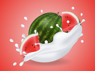 juicy sweet watermelon in milk splash. Milkshake with watermelon. Realistic style. Vector illustration.