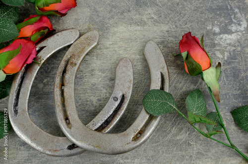 Two Old Horse Shoes Paired With Silk Red Roses On A Scratched Up Steel Background Make
