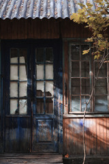 Abandoned house doors