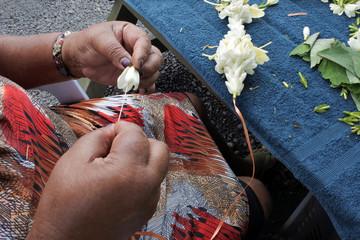 Cook Islander mature woman sewing a frangipani flowers lei Rarotonga Cook Islands