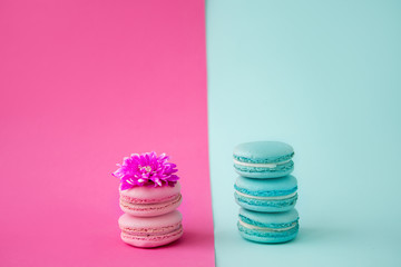 three mint macaroons stand on each other on a mint background and two pink macaroons stand on top of each other on a pink background