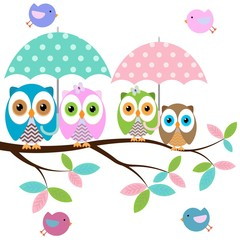 Four colorful owls with umbrella sitting on the branch and flying birds on a white background