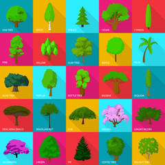 Tree types icons set, flat style