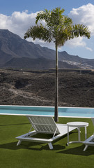 Cropped shot of residential or hospitality outdoor setup with small palm tree by the pool and white chaise lounge positioned on grass concept for luxury lifestyle, leisure holidays, work from anywhere