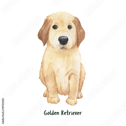 Illustration Of A Golden Retriever Puppy Stock Photo And Royalty