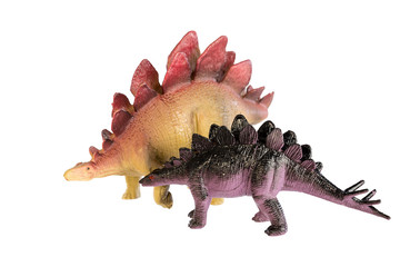 Dinosaur stegosaurus and monster model Isolated white background ,with clipping path