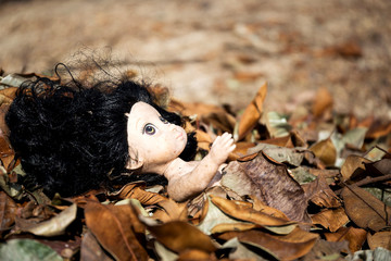 Old toy doll in the devastation