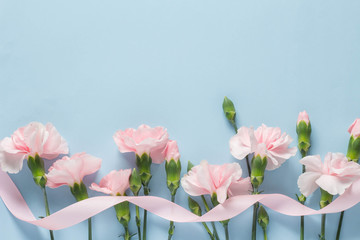 水色を背景にしたピンクのカーネーション