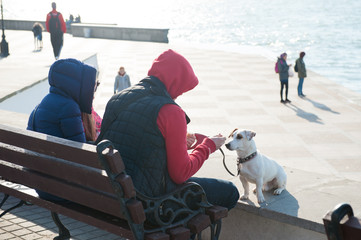 family people in jackets and hoods sit on the seashore in town with pet white dog in early spring