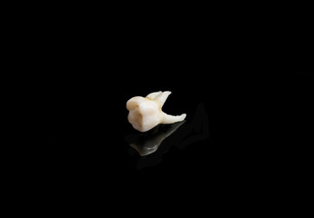 bad tooth remote on a black isolated background