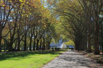 Carlton Gardens Autumn Melbourne Australia