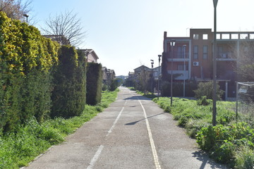 Running and Cycling Path