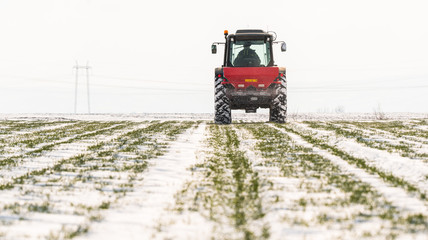 Farmer with tractor seeding - sowing crops at agricultural fields in winter