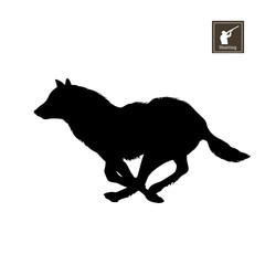 Black silhouette of running wolf on white background. Forest animals. Detailed isolated image. Vector illustration