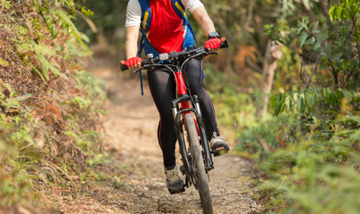 cyclist woman legs riding mountain bike on outdoor trail in forest