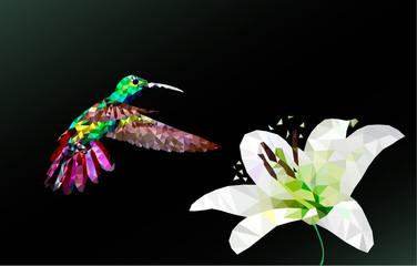 Hummingbird fly, vector polygon on the black blackground
